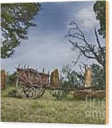 Wagon-hill Country Texas V2 Wood Print