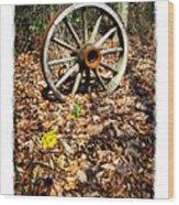 Wagon Wheel Daffodil Wood Print