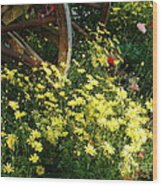 Wagon Wheel Flowers Wood Print