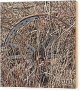 Wagon Wheel_7438 Wood Print