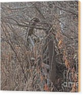 Wagon Wheel_7449 Wood Print