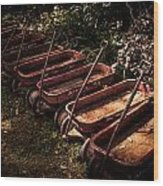 Wagons Of Yesterday Wood Print