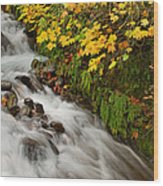 Wahkeena Falls At Columbia River Gorge In The Fall Wood Print