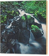 Wahkeenah Falls Columbia River Gorge Nsa Oregon Wood Print