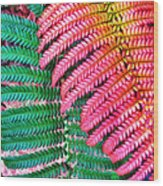 Waikamoi 47 Wood Print