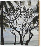 Waikiki Beach Hawaii Usa Wood Print