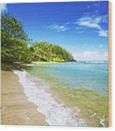 Waikoko Beach Shore Wood Print