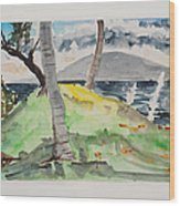 Wailea Beach Maui Wood Print