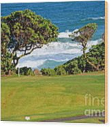 Wailua Golf Course - Hole 17 - 2 Wood Print