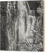 Wailua Waterfall 3 Wood Print
