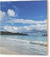 Waimanalo And Bellows Beach 1 Wood Print