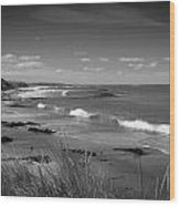 Waipapa Beach New Zealand Wood Print