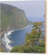 Waipio Valley Overlook Wood Print