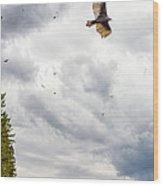 Waiting Turkey Vultures Wood Print