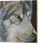 Waiting Wolf Wood Print