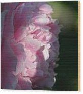 Wake Up Pink Peony Wood Print