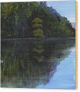 Wakulla Skimmers Wood Print