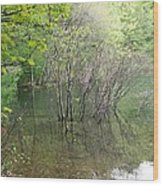 Walden Pond Wood Print