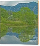 Walden Pond Spring Reflections Wood Print by George Tuffy