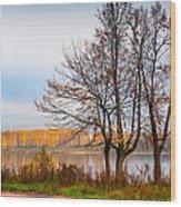 Walk Along The River Bank Wood Print