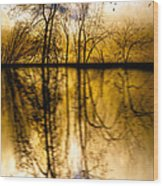 Walk Along The River Wood Print