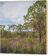 Walk Among The Pines Wood Print