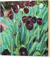 Walk Among The Tulips Wood Print