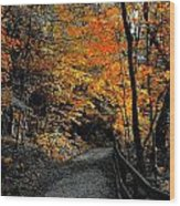 Walk In Golden Fall Wood Print