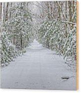 Walk In Snowy Woods Wood Print