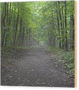 Walk Of Life Wood Print by Cim Paddock