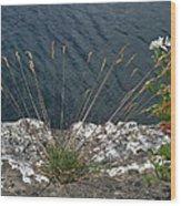Flowers In Rock Wood Print