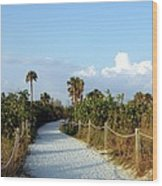 Walk Way To Beach Wood Print