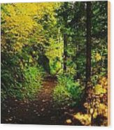 Walking An Autumn Path Wood Print