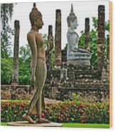 Walking And Sitting Buddha Images At Wat Sa Si In Sukhothai Historical Park-thailand Wood Print