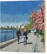 Walking Around Reservoir In Central Park Wood Print