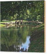 Walking Bridge Wood Print