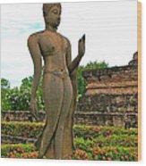 Walking Buddha Image In Wat Sa Si In Sukhothai Historical Park-t Wood Print