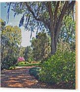 Walking In A Garden Wood Print