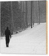 Walking In A Winter Wonderland Wood Print