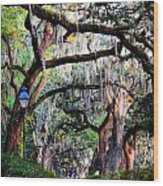 Walking In Forsyth Park Wood Print