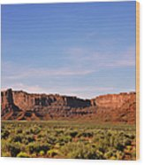 Walking In The Valley Of The Gods Wood Print by Christine Till