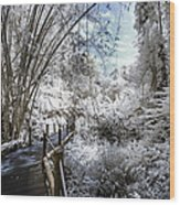 Walking Into The Infrared Jungle 2 Wood Print