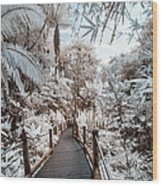 Walking Into The Infrared Jungle 3 Wood Print