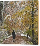 Walking Into Winter - Beautiful Autumnal Trees And The First Snow Of The Year Wood Print by Matthias Hauser