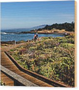 Walking On The Boardwalk Wood Print
