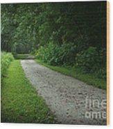 Walking Path Wood Print
