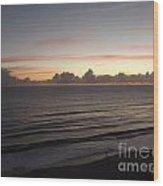Walking The Beach At Sunrise Wood Print