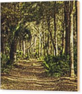 Walking The Bluff Artistic Wood Print