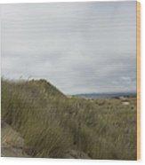 Walking The Dunes Wood Print