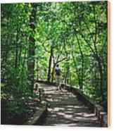 Walking The Path  Wood Print